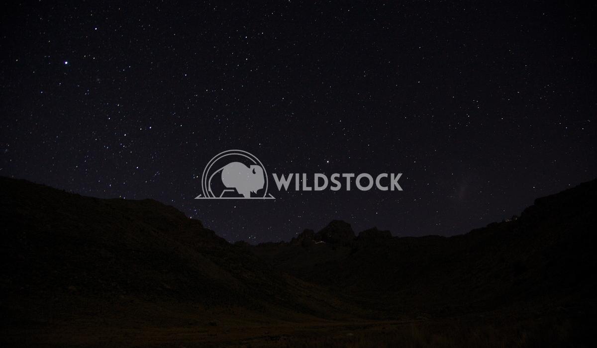 Distant Stars Over Kenya Henry McCluster