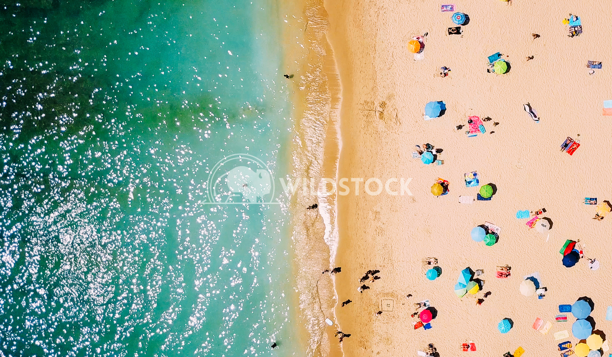 Aerial View From Flying Drone Of People Relaxing On Beach In Portugal Radu Bercan Aerial View From Flying Drone Of Peopl