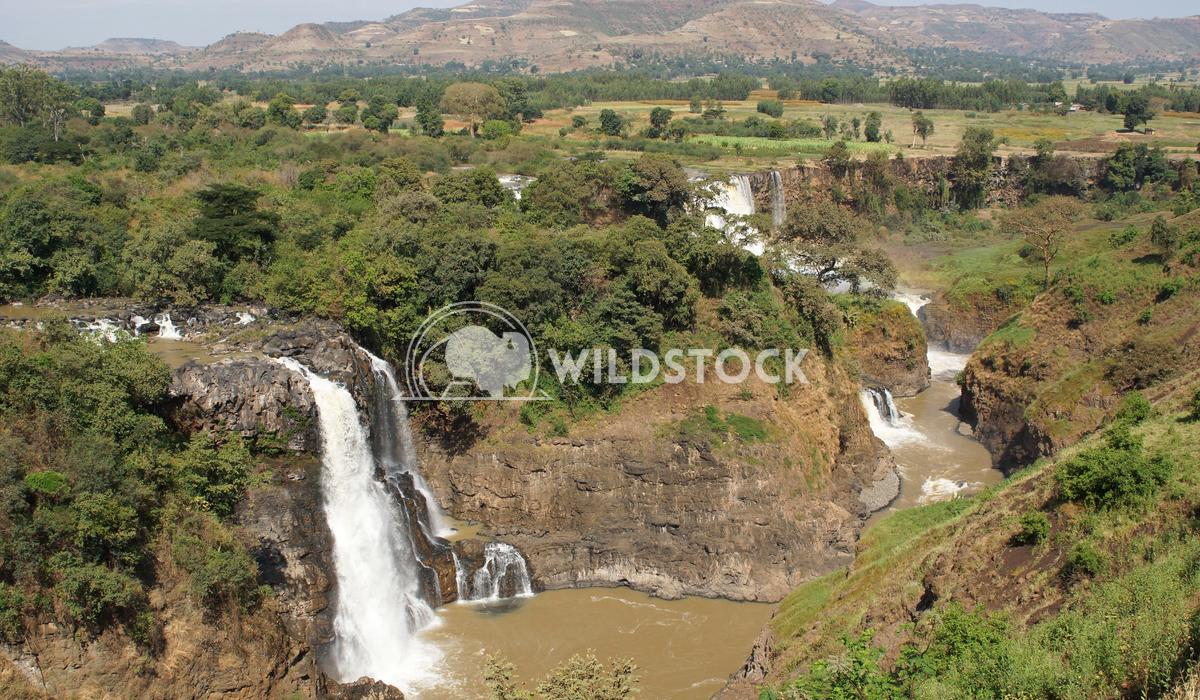 Blue Nile falls, Bahar Dar, Ethiopia 1 Alexander Ludwig Blue Nile waterfalls, Bahar Dar, Ethiopia, Africa