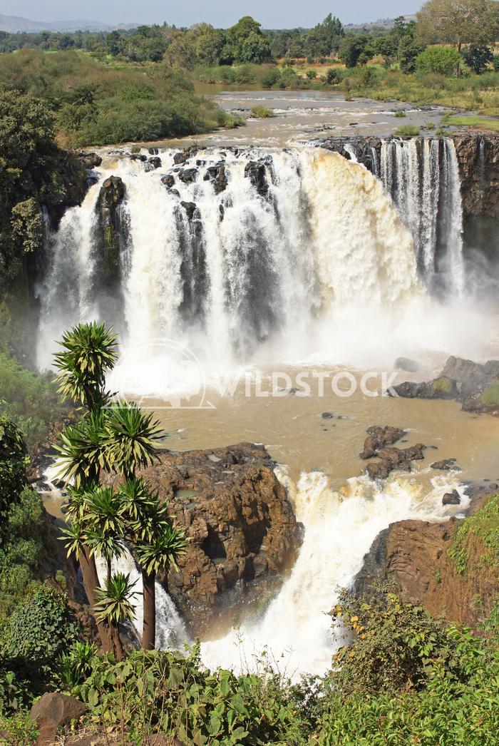 Blue Nile falls, Bahar Dar, Ethiopia 8 Alexander Ludwig Blue Nile waterfalls, Bahar Dar, Ethiopia, Africa