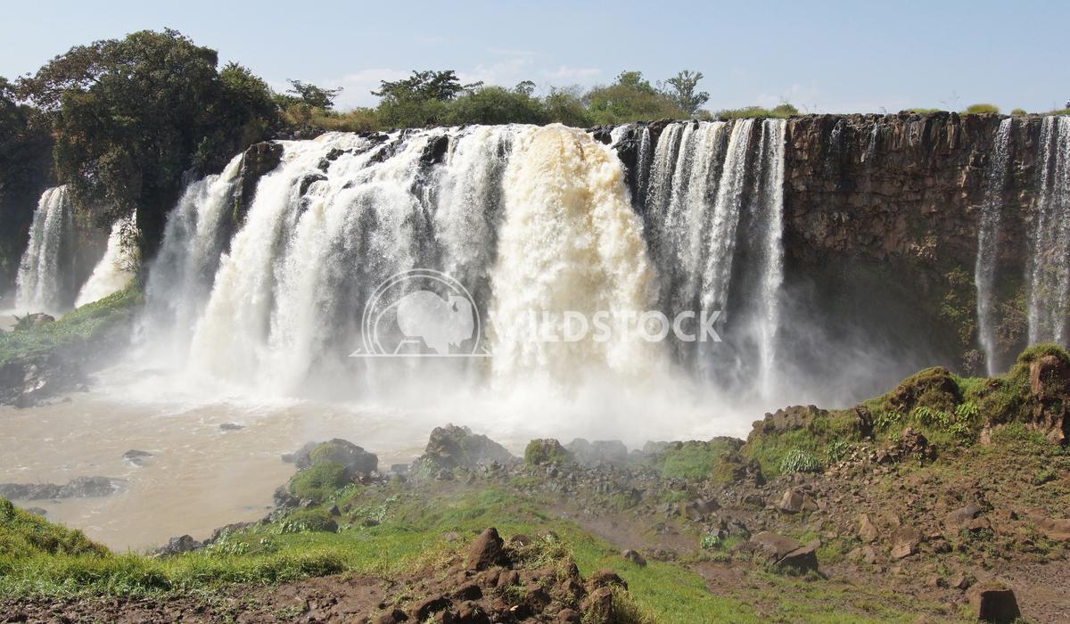 Blue Nile falls, Bahar Dar, Ethiopia 10 Alexander Ludwig Blue Nile waterfalls, Bahar Dar, Ethiopia, Africa