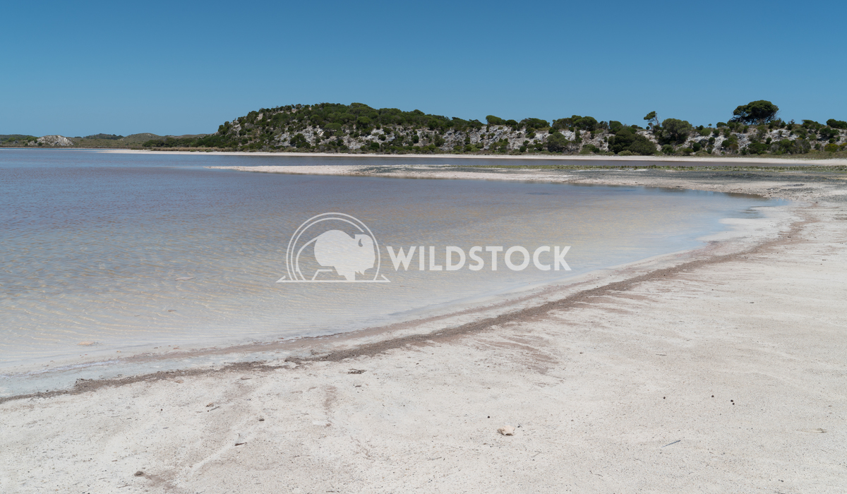 Salt lakes, Rottnest Island, Western Australia 5 Alexander Ludwig Landscape around the salt lakes of Rottnest Island, We