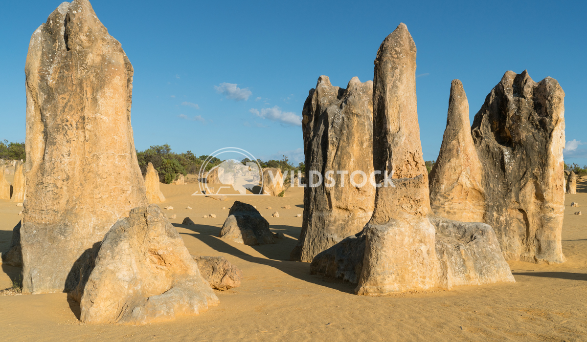 Nambung National Park, Western Australia 9 Alexander Ludwig Pinnacles Desert in early morning light, Nambung National Pa