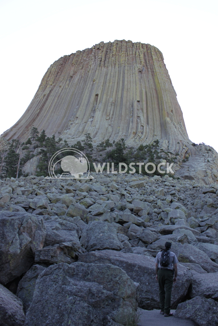 Rock Field at the Base of Devil's Tower Damon Yeh