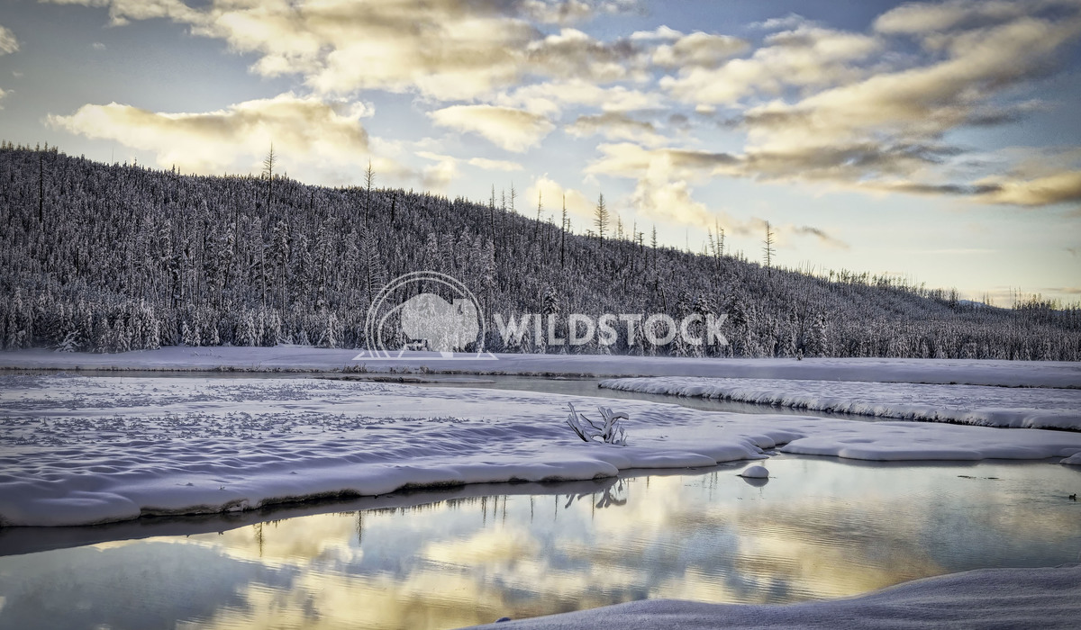 Winter Yellowstone Sunset Stacy White