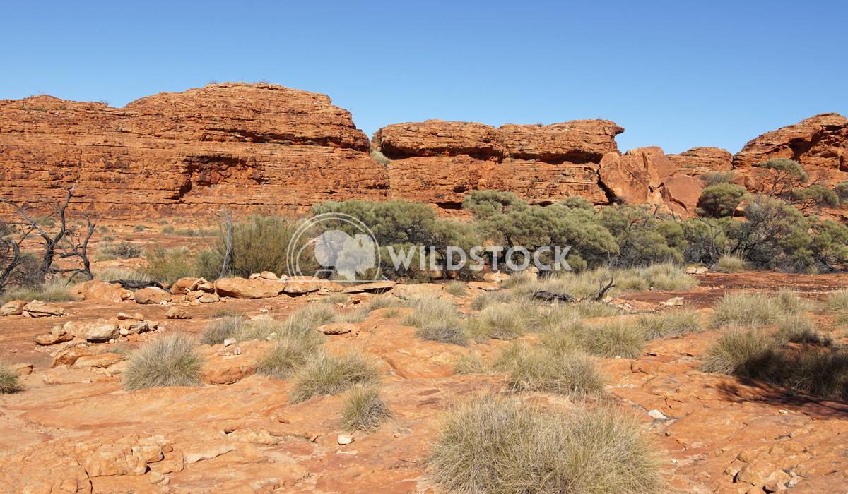 Kings Canyon, Australia 4 Alexander Ludwig Landscape of the Kings Canyon, Outback of Australia