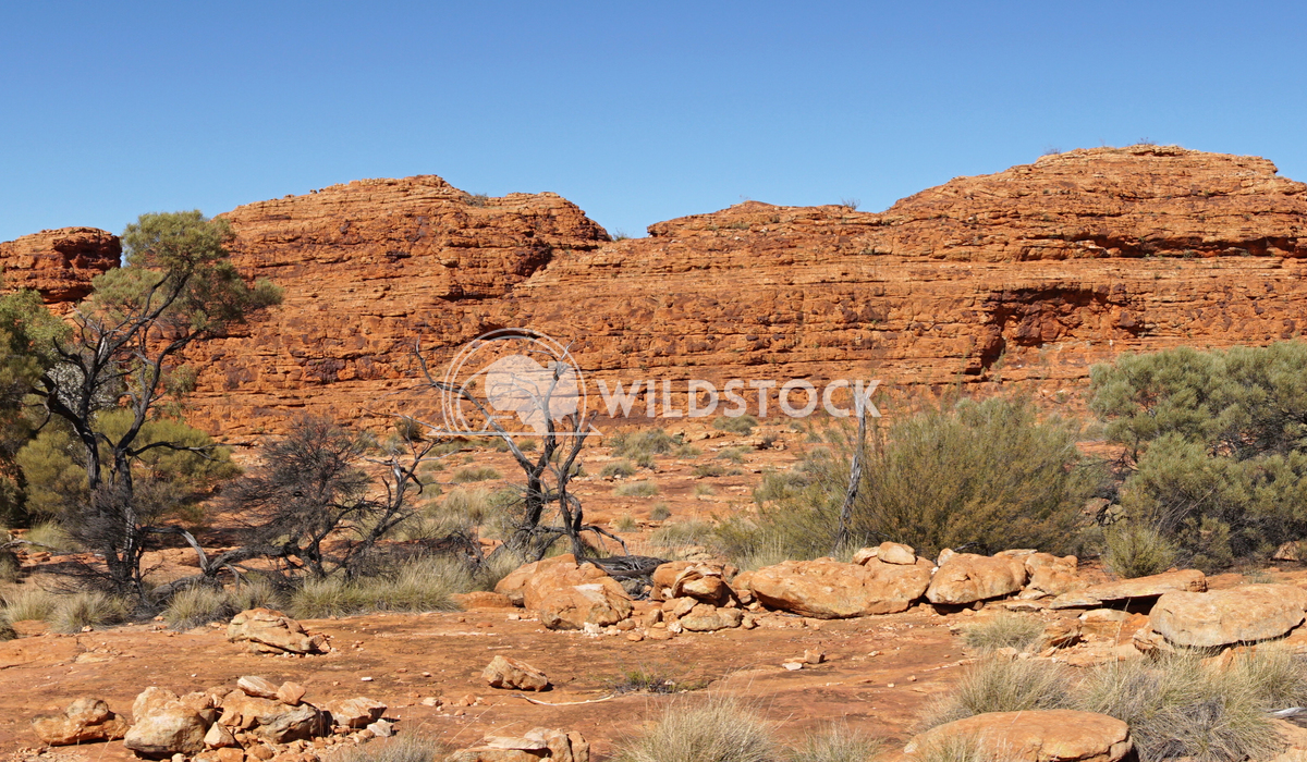 Kings Canyon, Australia 6 Alexander Ludwig Landscape of the Kings Canyon, Outback of Australia