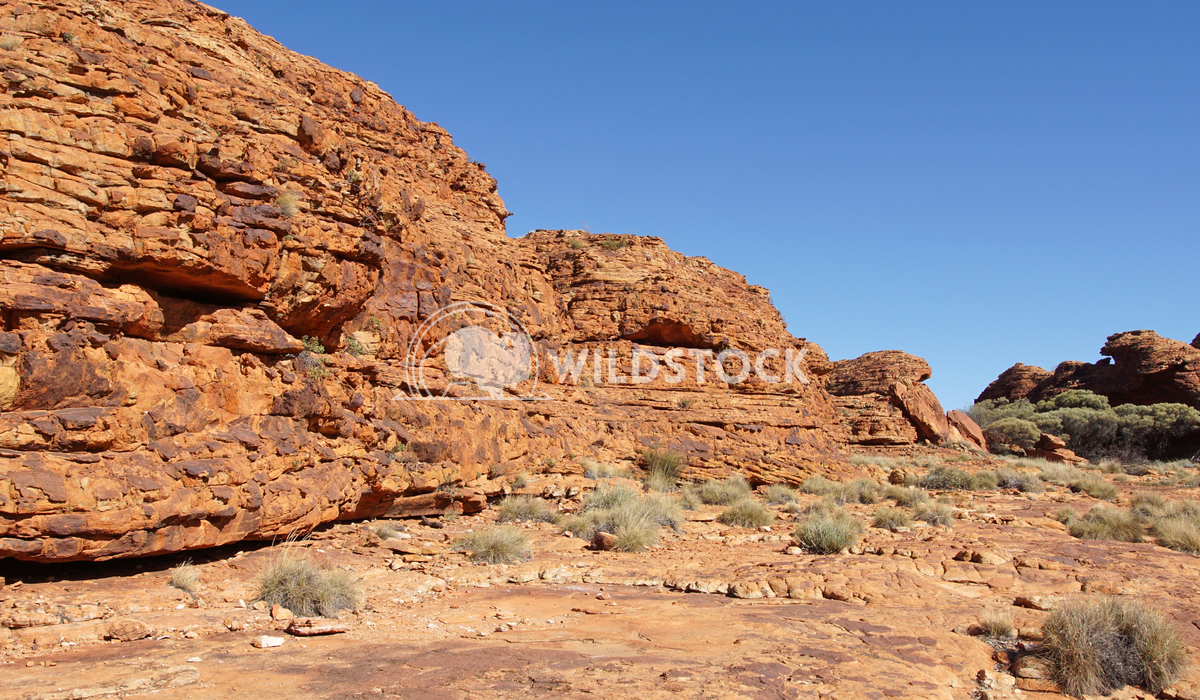 Kings Canyon, Australia 7 Alexander Ludwig Landscape of the Kings Canyon, Outback of Australia