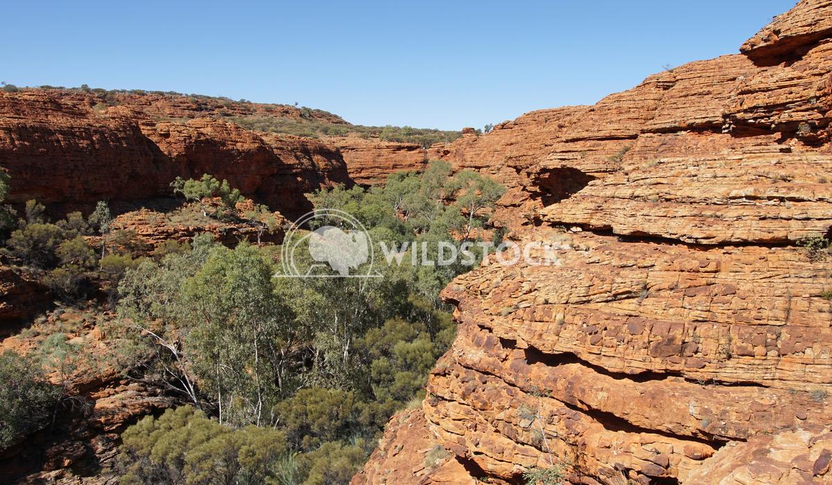 Kings Canyon, Australia 15 Alexander Ludwig Landscape of the Kings Canyon, Outback of Australia