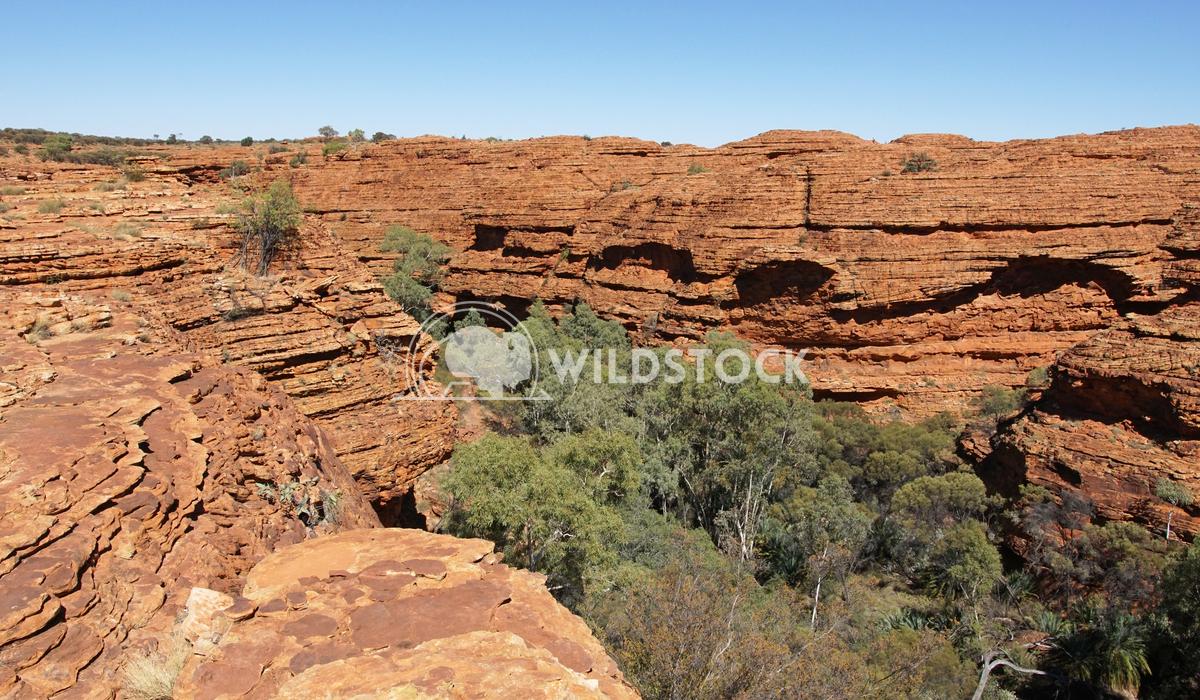 Kings Canyon, Australia 16 Alexander Ludwig Landscape of the Kings Canyon, Outback of Australia