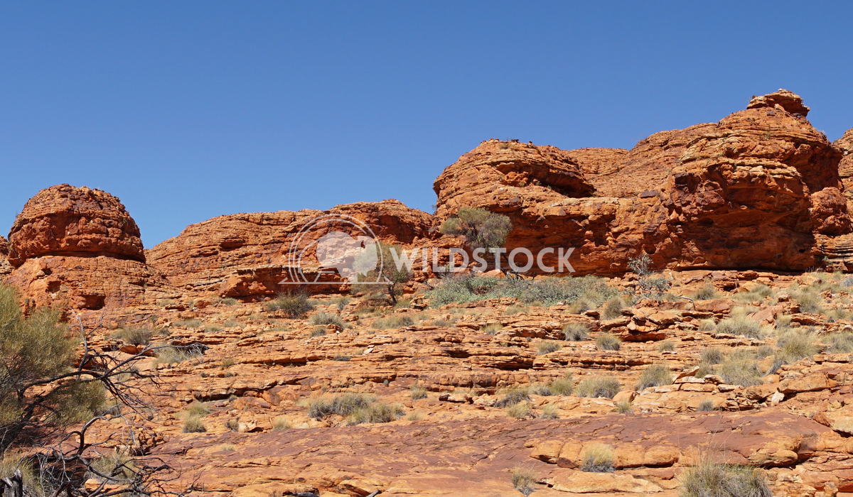 Kings Canyon, Australia 20 Alexander Ludwig Landscape of the Kings Canyon, Outback of Australia