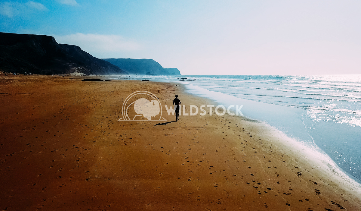 Aerial Drone View Of Healthy Sportive Woman Running On Beach Near Ocean Radu Bercan Aerial Drone View Of Healthy Sportiv