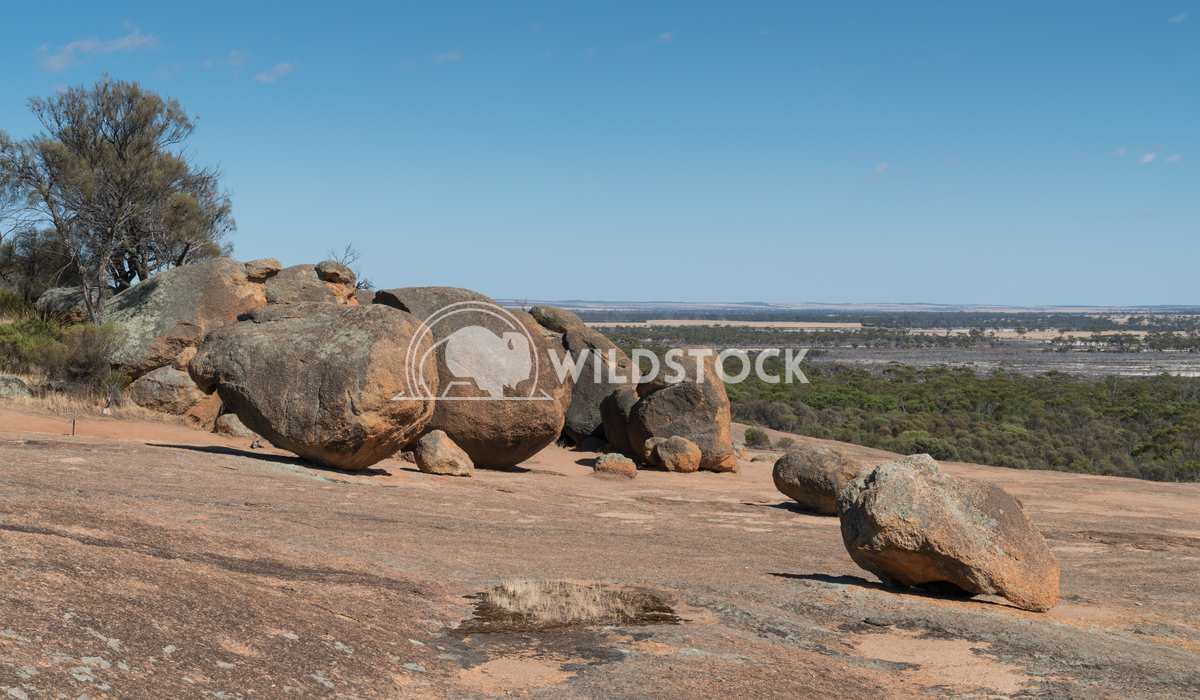 Landscape around the Wave Rock, Western Australia 4 Alexander Ludwig Landscape around the Wave Rock, famous place in the