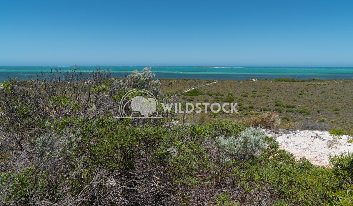 Coast, Cervantes, Western Australia 2 Alexander Ludwig Coastal landscape close to Cervantes on a stormy day, Western Aus