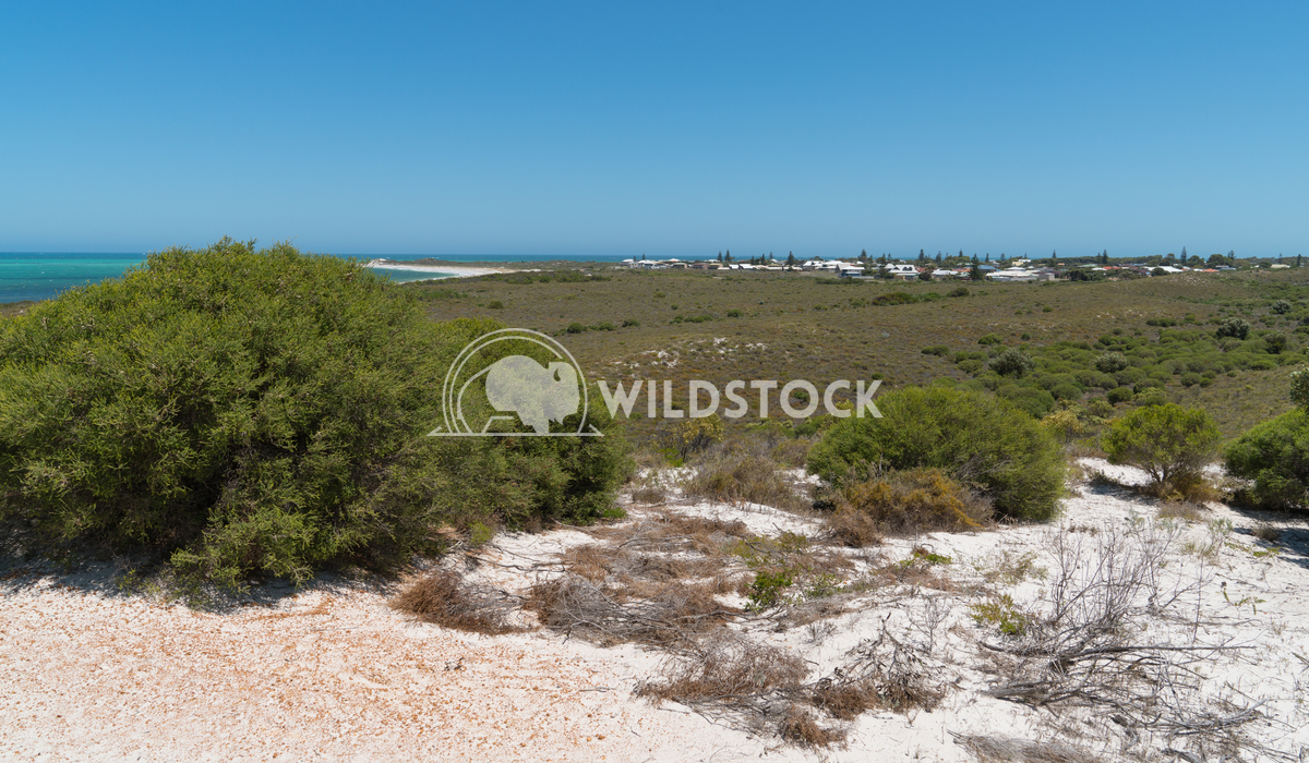 Coast, Cervantes, Western Australia 3 Alexander Ludwig Coastal landscape close to Cervantes on a stormy day, Western Aus