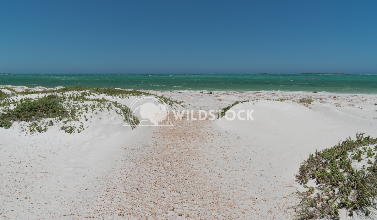 Coast, Cervantes, Western Australia 5 Alexander Ludwig Coastal landscape close to Cervantes on a stormy day, Western Aus