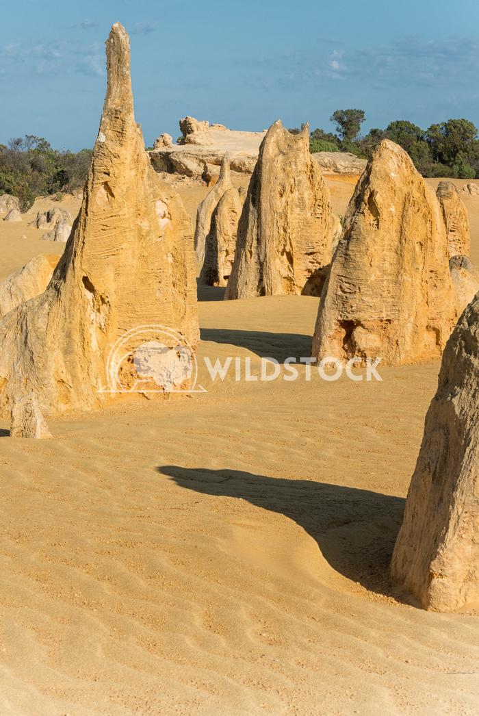 Nambung National Park, Western Australia 56 Alexander Ludwig Pinnacles Desert, Nambung National Park, Western Australia