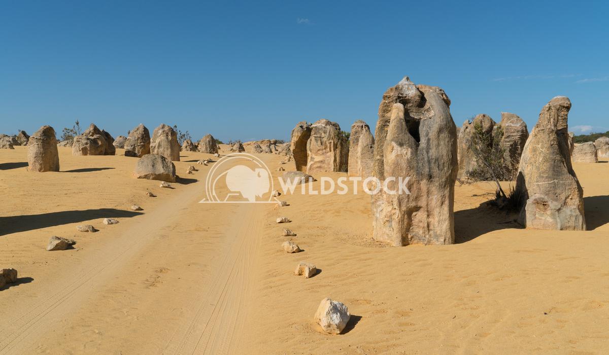Nambung National Park, Western Australia 59 Alexander Ludwig Pinnacles Desert, Nambung National Park, Western Australia