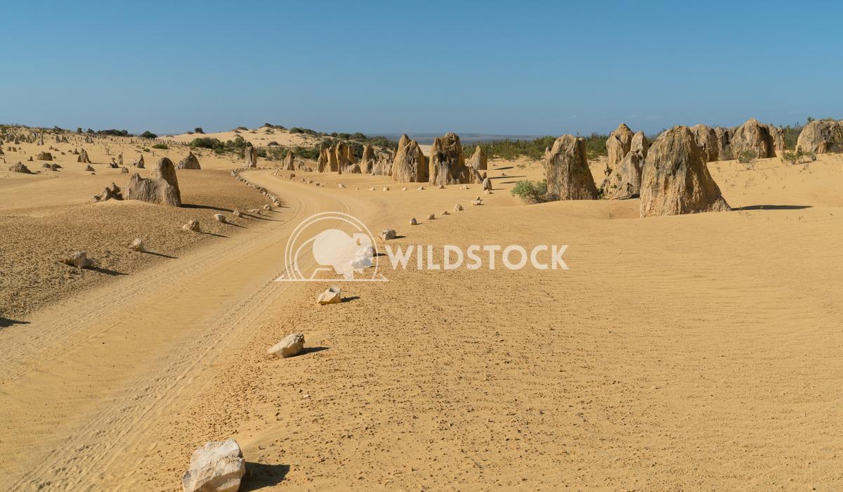 Nambung National Park, Western Australia 63 Alexander Ludwig Pinnacles Desert, Nambung National Park, Western Australia