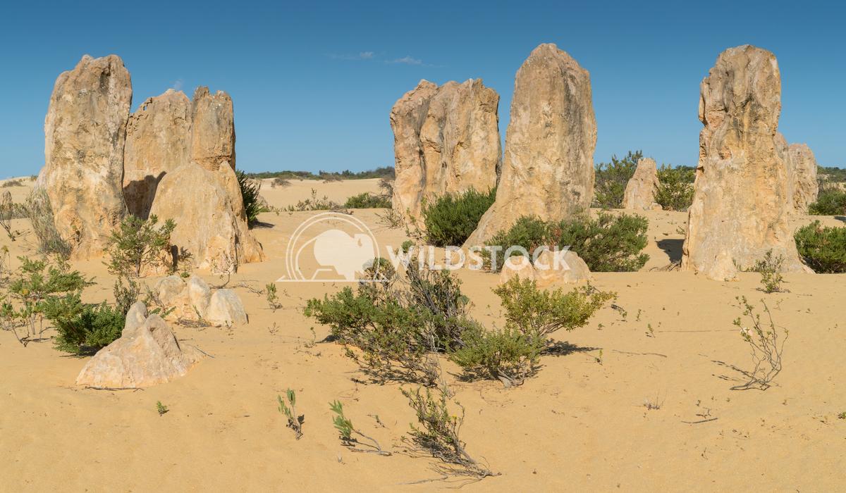 Nambung National Park, Western Australia 64 Alexander Ludwig Pinnacles Desert, Nambung National Park, Western Australia