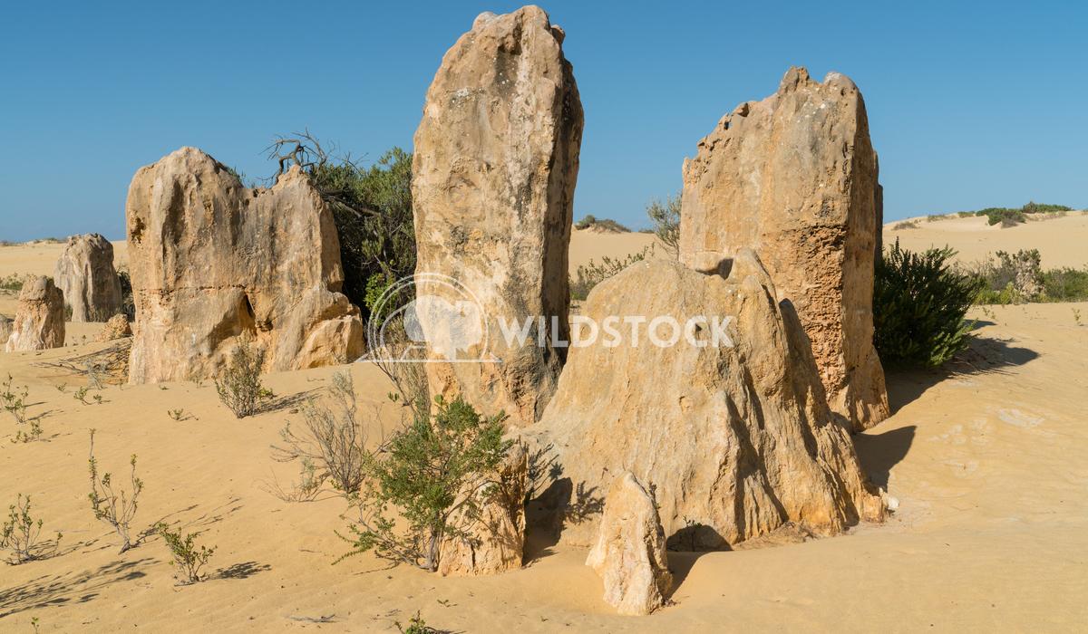 Nambung National Park, Western Australia 65 Alexander Ludwig Pinnacles Desert, Nambung National Park, Western Australia