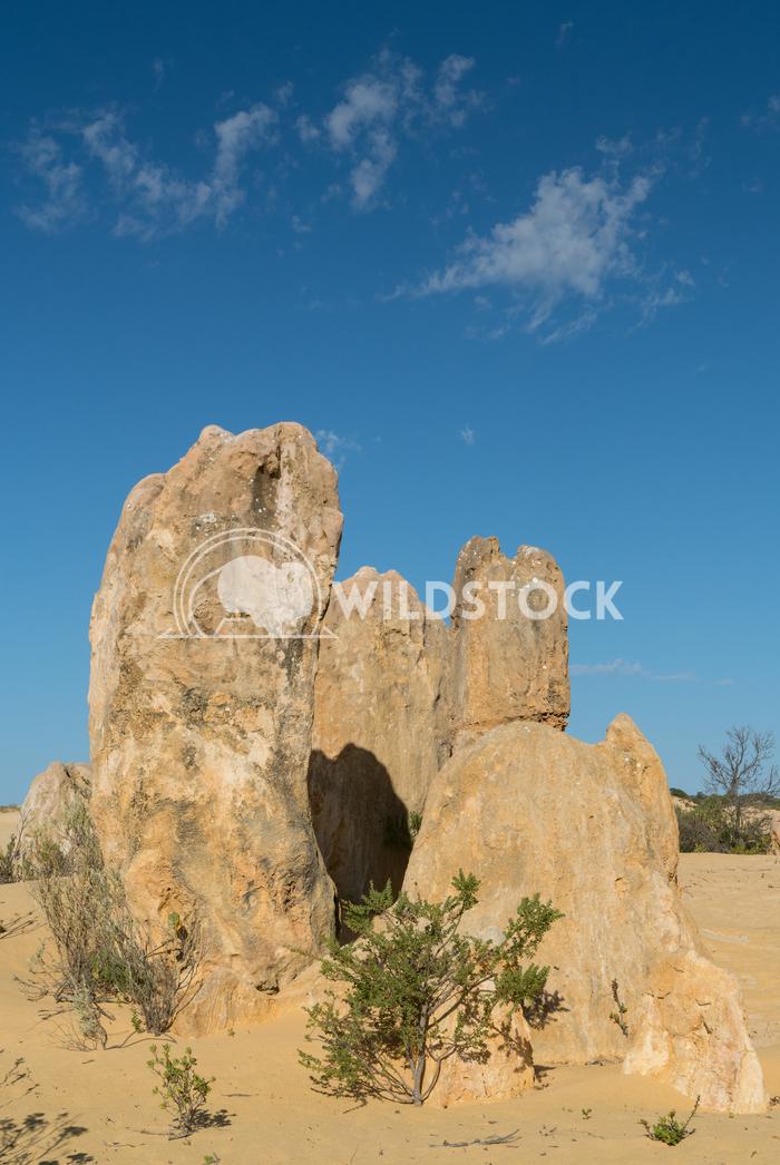 Nambung National Park, Western Australia 66 Alexander Ludwig Pinnacles Desert, Nambung National Park, Western Australia