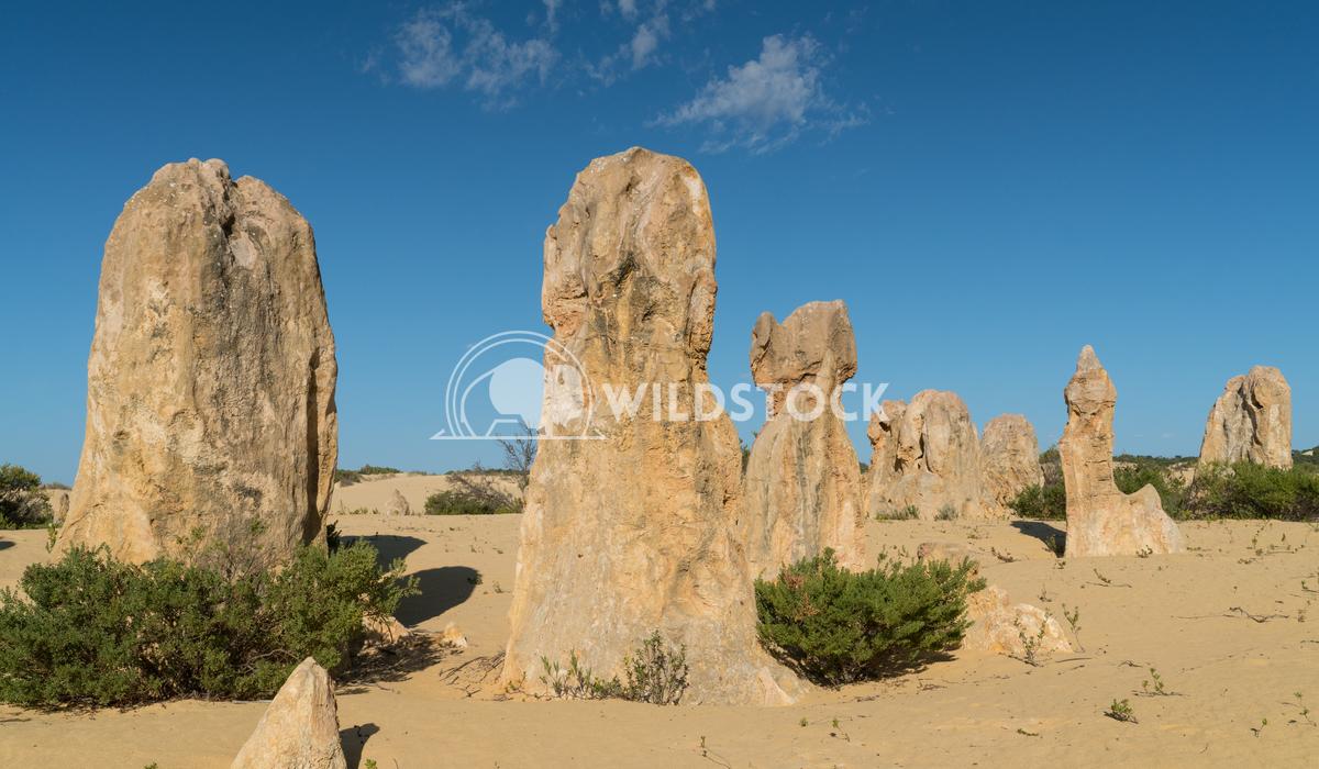 Nambung National Park, Western Australia 67 Alexander Ludwig Pinnacles Desert, Nambung National Park, Western Australia