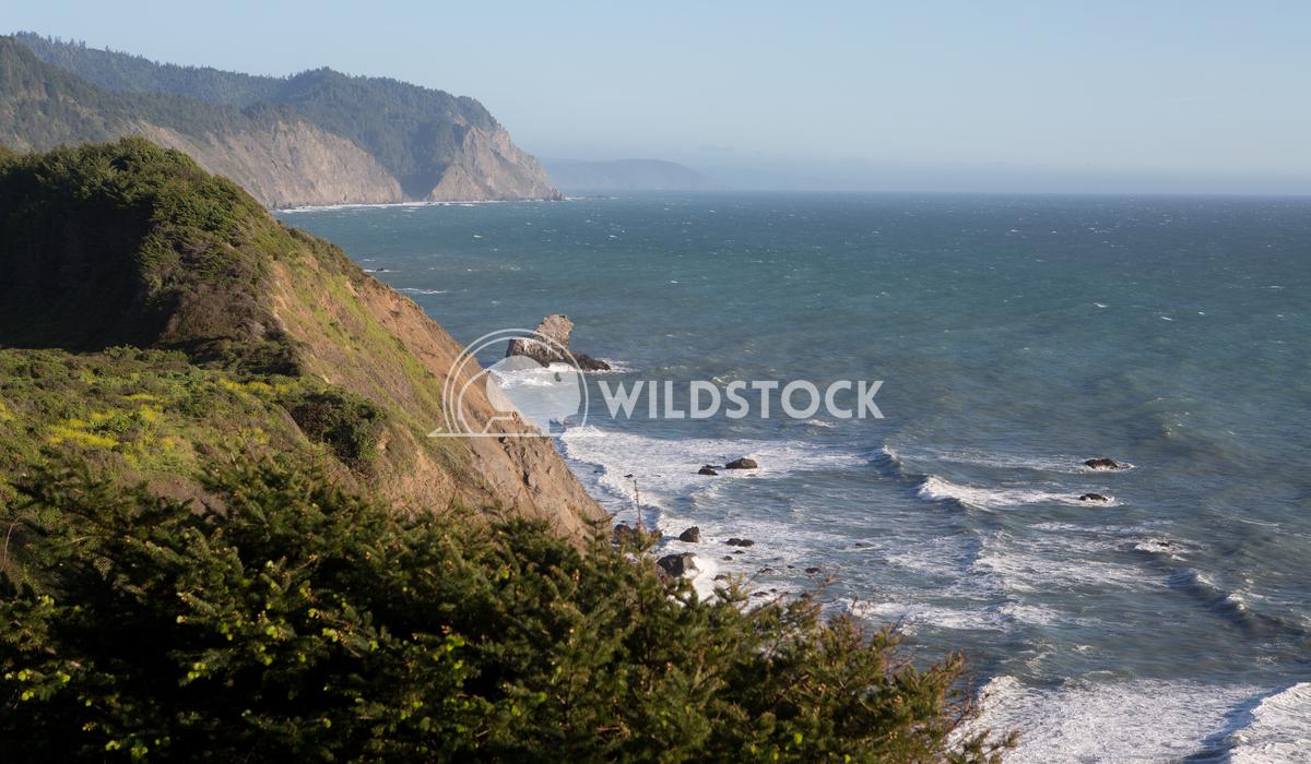 Down Coastal Yonder Henry McCluster