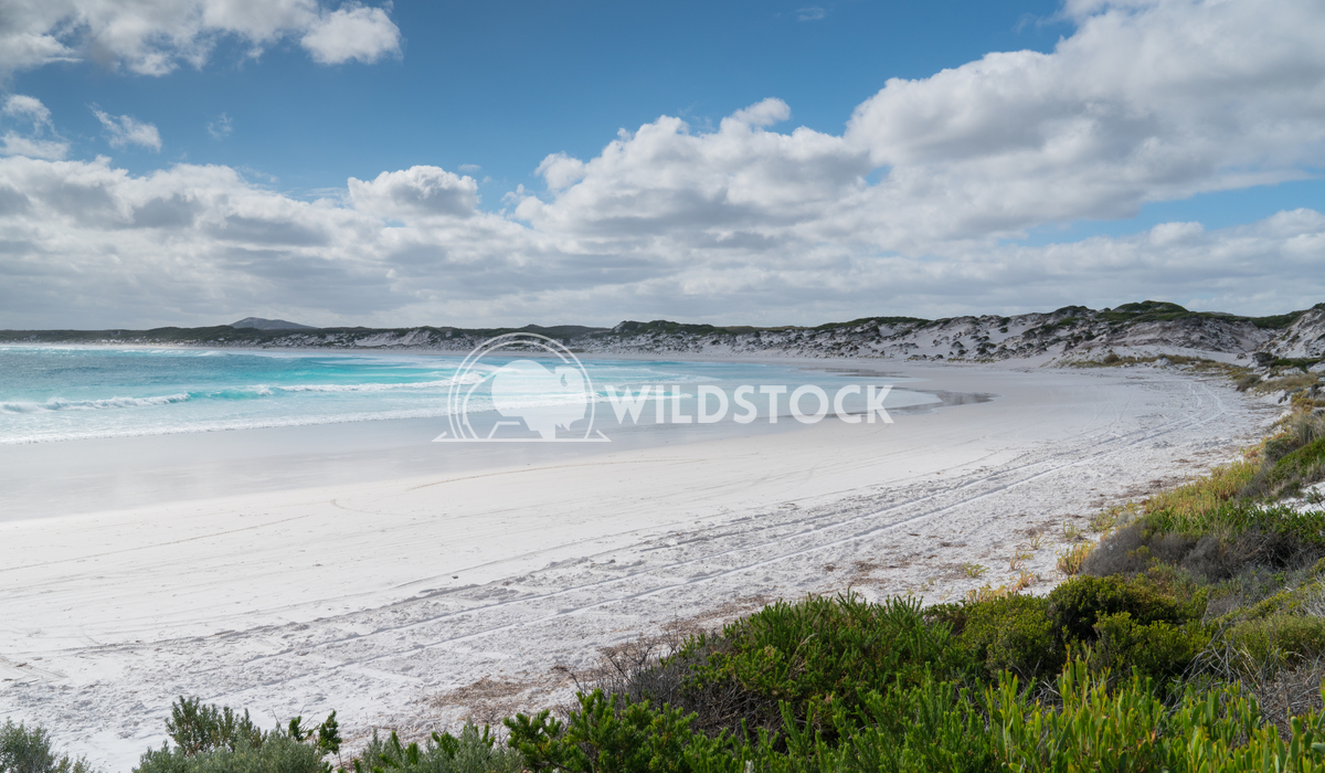 Wharton Beach, Cape Le Grand National Park, Western Australia 5 Alexander Ludwig White Wharton Beach on a summer day, on