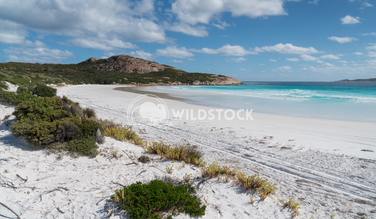 Wharton Beach, Cape Le Grand National Park, Western Australia 4 Alexander Ludwig White Wharton Beach on a summer day, on