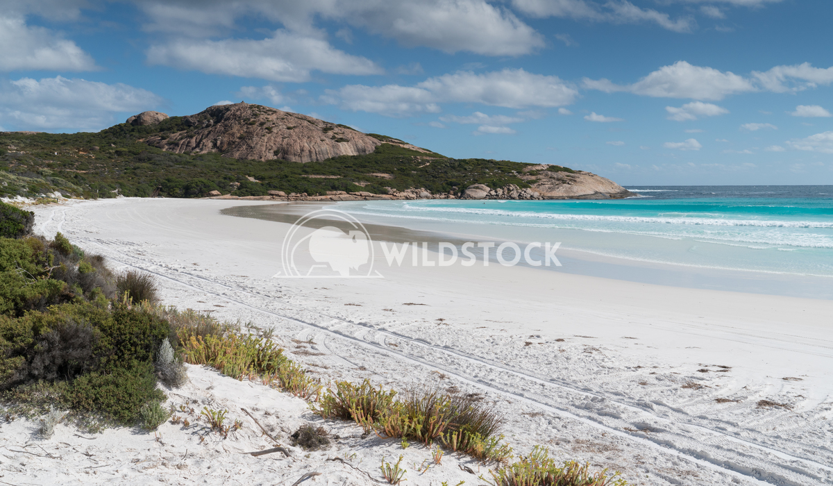Wharton Beach, Cape Le Grand National Park, Western Australia 3 Alexander Ludwig White Wharton Beach on a summer day, on