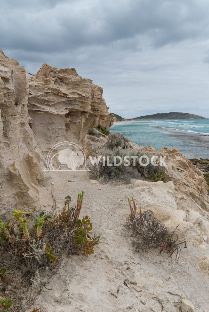 Nine Mile Beach close to Esperance, Australia 5 Alexander Ludwig Nine Mile Beach close to Esperance on an overcast day,