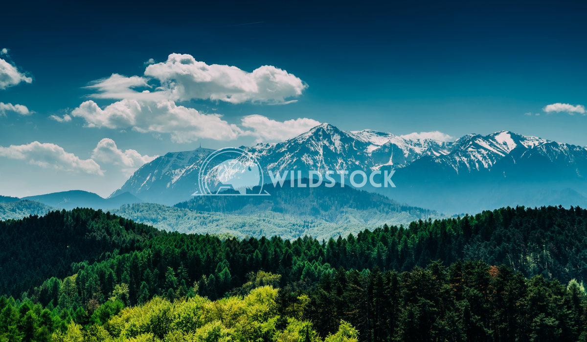 Carpathian Mountains Landscape With Blue Sky Radu Bercan Carpathian Mountains Landscape With Blue Sky In Summer