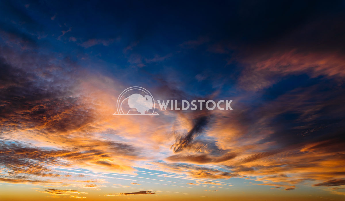 Beautiful Orange And Blue Summer Sunset Sky Radu Bercan Beautiful Orange And Blue Summer Sunset Sky