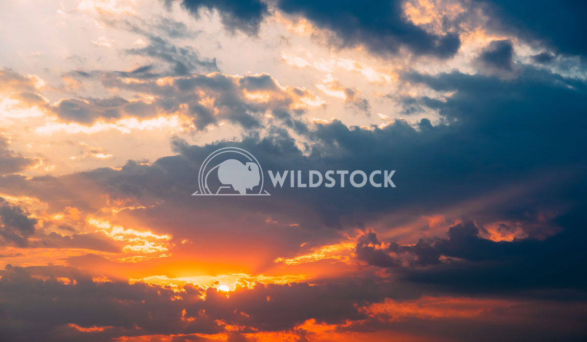 Sunset On Cloudy Summer Sky Radu Bercan Beautiful Sunset On Cloudy Summer Sky