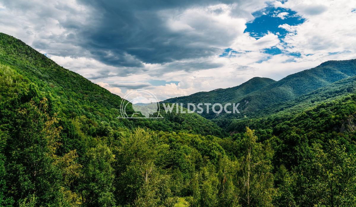 Beautiful Carpathian Mountains Summer Landscape In Romania Radu Bercan Beautiful Carpathian Mountains Summer Landscape I