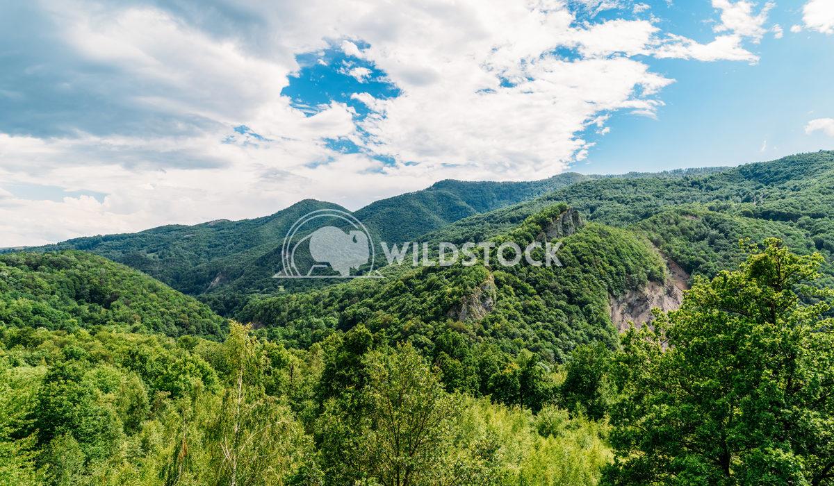Beautiful Carpathian Mountains Landscape In Romania Radu Bercan Beautiful Carpathian Mountains Summer Landscape In Roman
