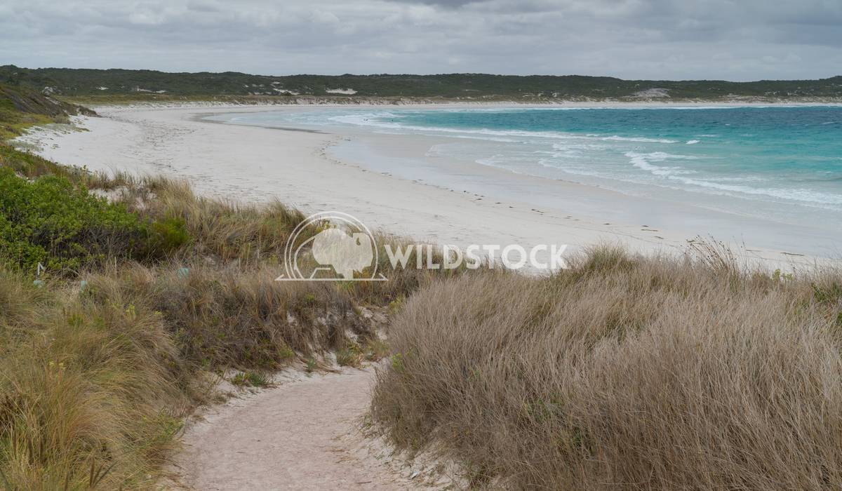 Twilight Beach, Esperance, Western Australia 2 Alexander Ludwig Twilight Beach close to Esperance on an overcast day, We