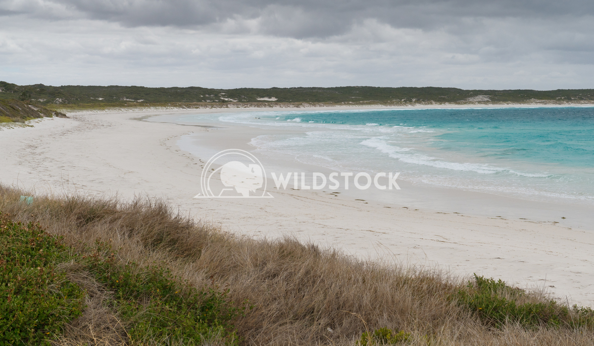 Twilight Beach, Esperance, Western Australia 3 Alexander Ludwig Twilight Beach close to Esperance on an overcast day, We