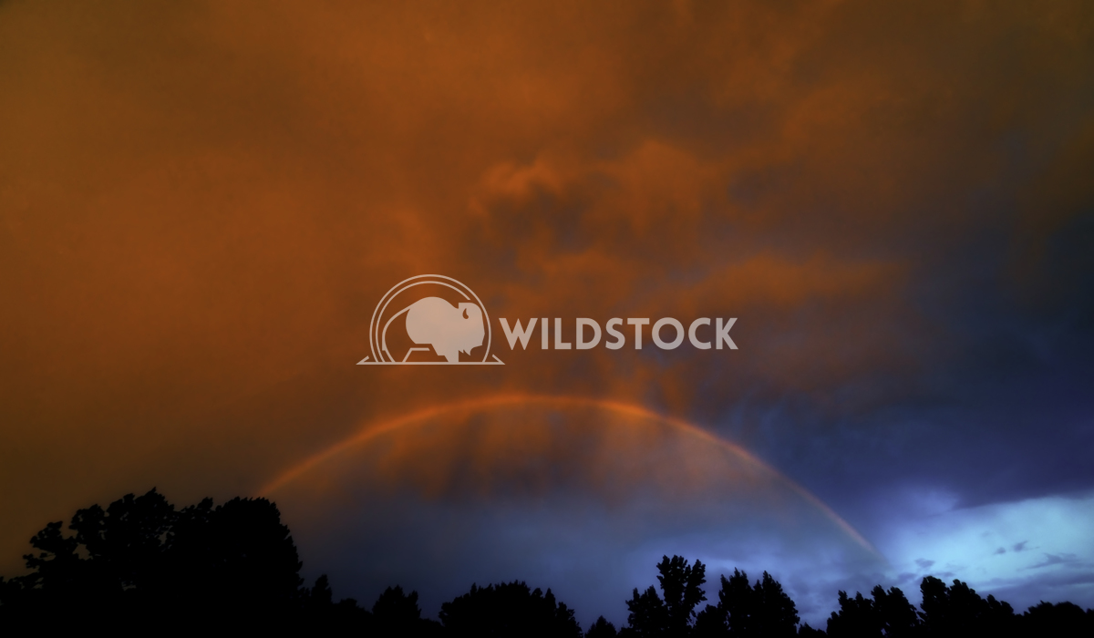Rainbow After The Storm Tim Thompson The storm clears, rainbow forms and the sun sets all at once. God is amazing!