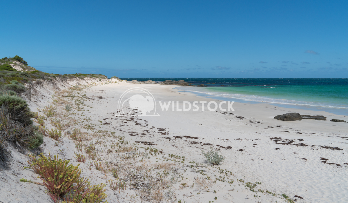 Beach, Fitzgerald River National Park, Western Australia 1 Alexander Ludwig Beautiful place within the Fitzgerald River