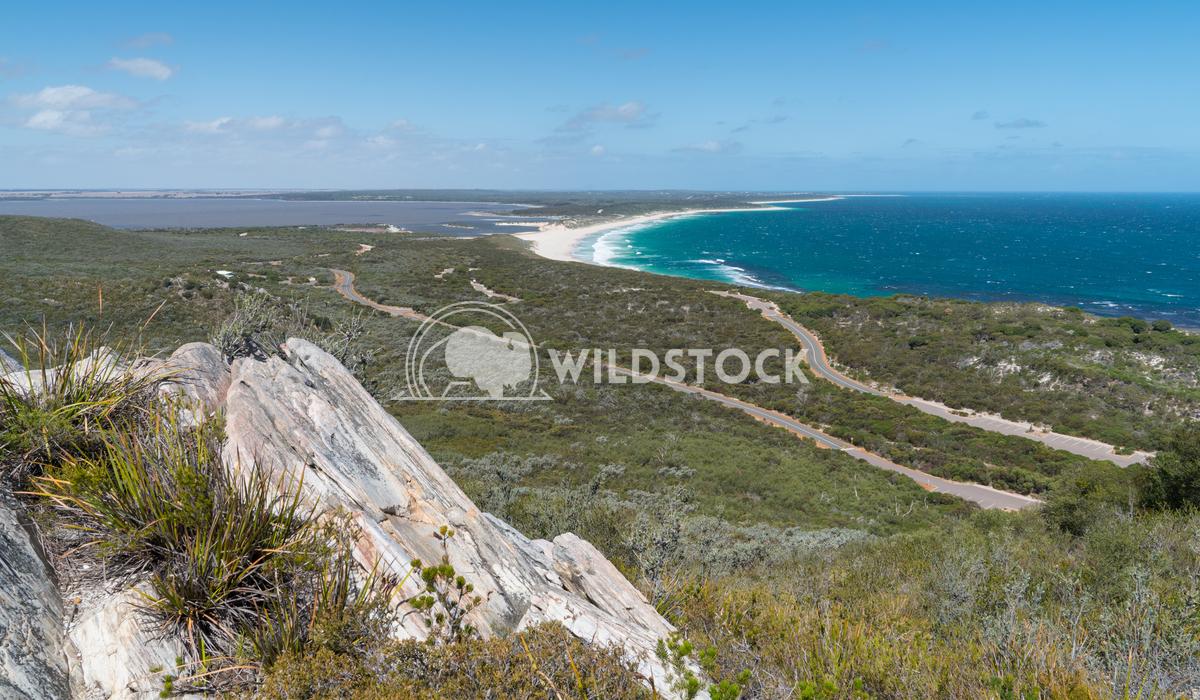 Landscape, Fitzgerald River National Park, Western Australia 1 Alexander Ludwig Landscape within the Fitzgerald River Na