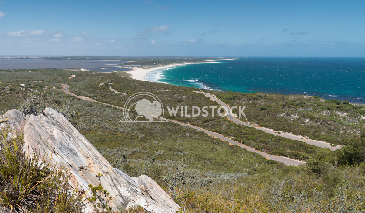 Landscape, Fitzgerald River National Park, Western Australia 2 Alexander Ludwig Landscape within the Fitzgerald River Na