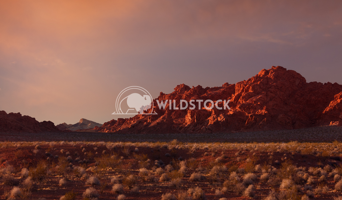 Valley of Fire at sunset Lara Eichenwald Valley of Fire State Park Nevada