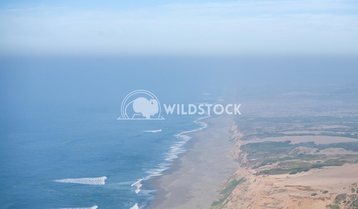 Pacific Ocean Lara Eichenwald