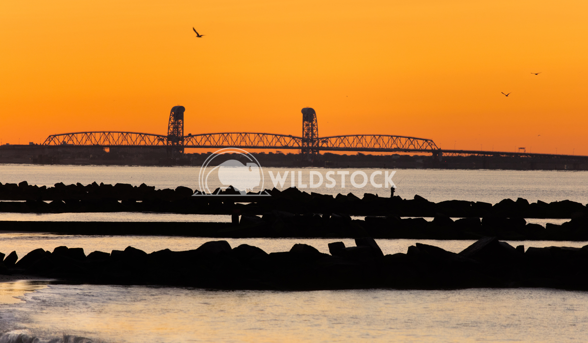 Silhouettes of the jetties Lara Eichenwald Early morning on Coney Island.  Atlantic Ocean