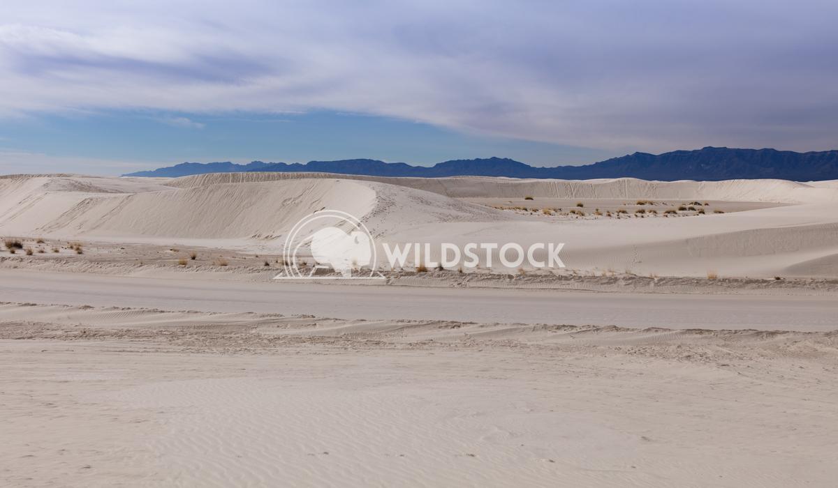 Dunes Lara Eichenwald White Sands National Monument in New Mexico