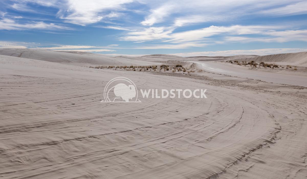 White gypsum sand Lara Eichenwald White Sands National Monument in New Mexico