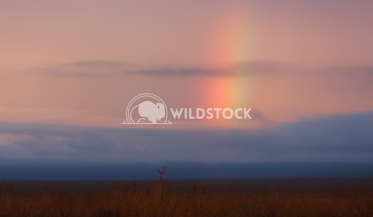 Rainbow in Mojave Desert Lara Eichenwald Mojave Desert