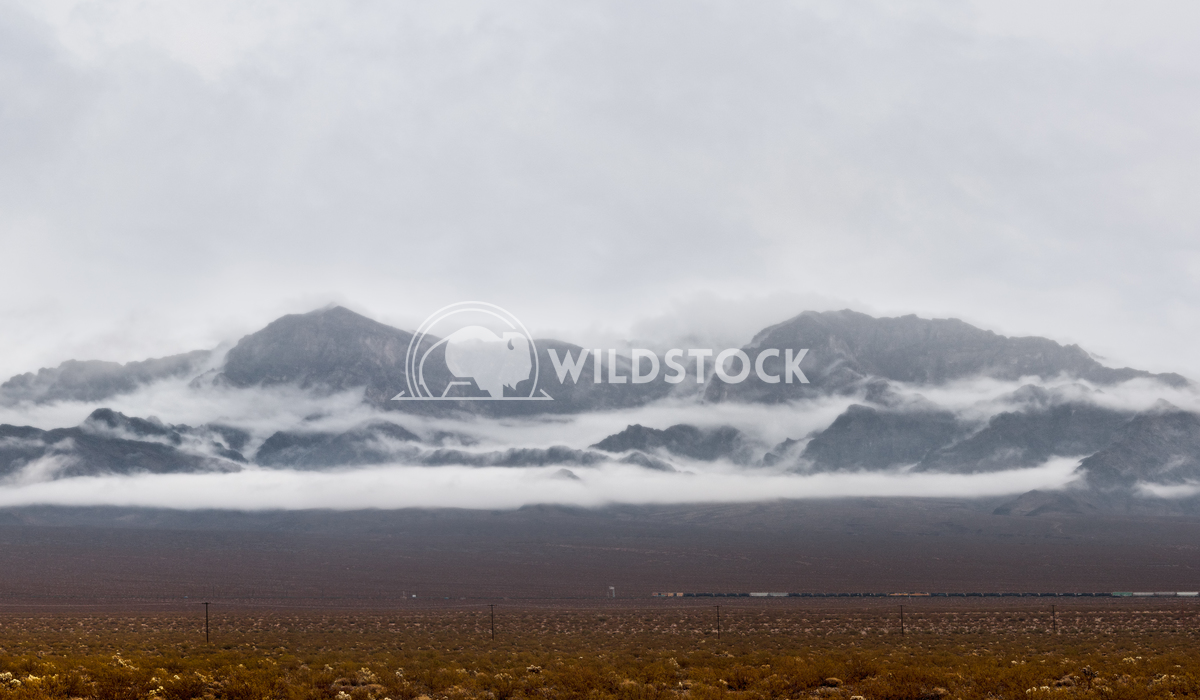 Low clouds passing through Mojave Desert Lara Eichenwald Mojave Desert CA